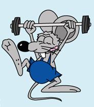 Мышь спортсмен